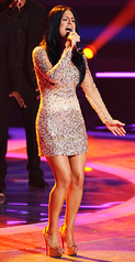 7757 American Idol 2011 Dress featured on Pia
